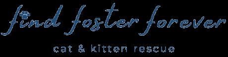 Find Foster Forever